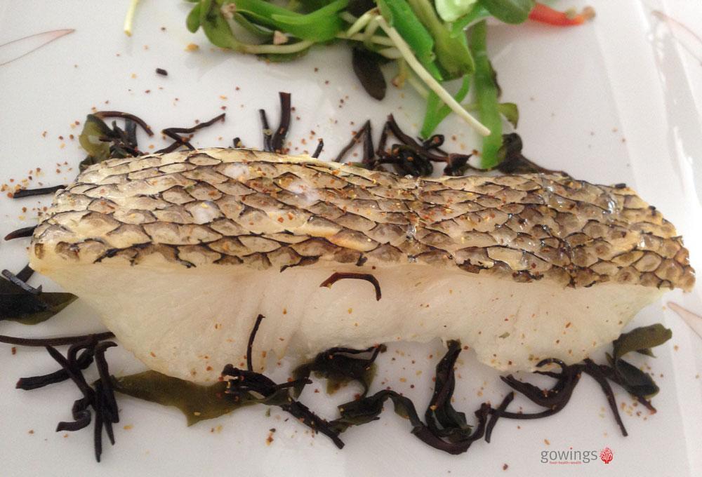Gowings_Toothfish