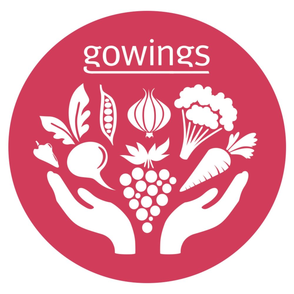 gowings-icon-2-red